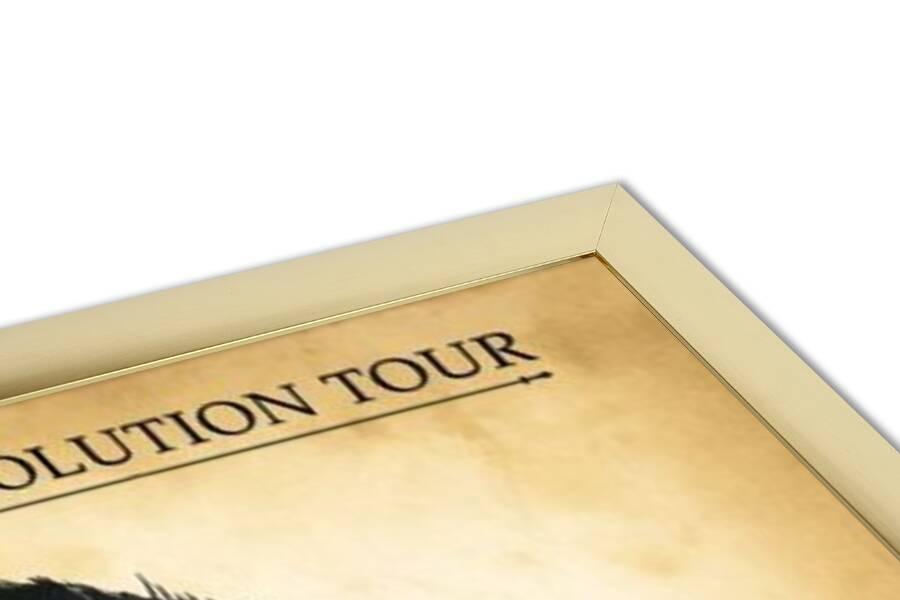Poster  Robin Thicke - evolution tour