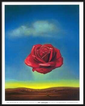 Pôster emoldurado Meditative Rose, 1958