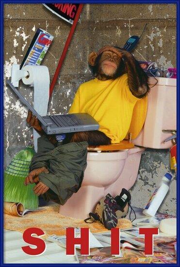 Poster  Bongo bongo