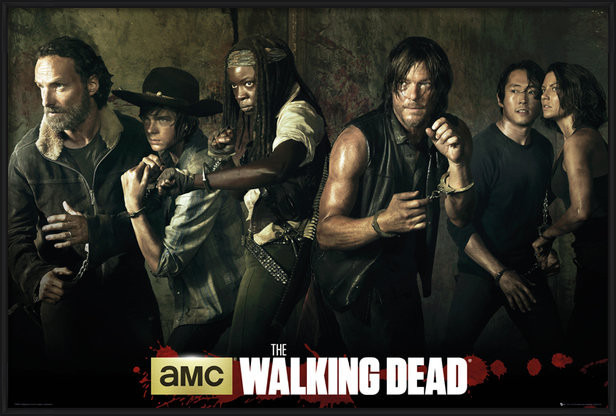 Poster  The Walking Dead - Season 5