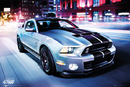 Ford Shelby - GT 500 (2014)